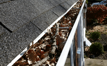gutter cleaning idaho falls